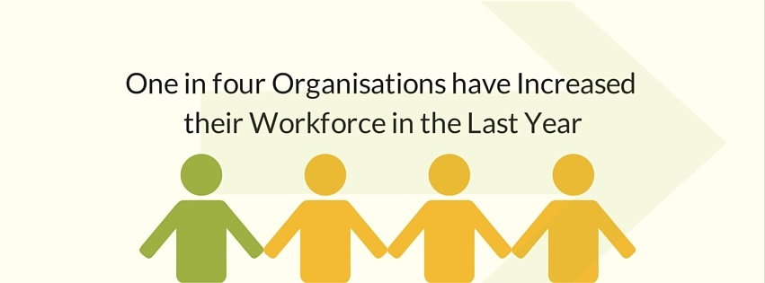 One in four Organisations have Increased their Workforce